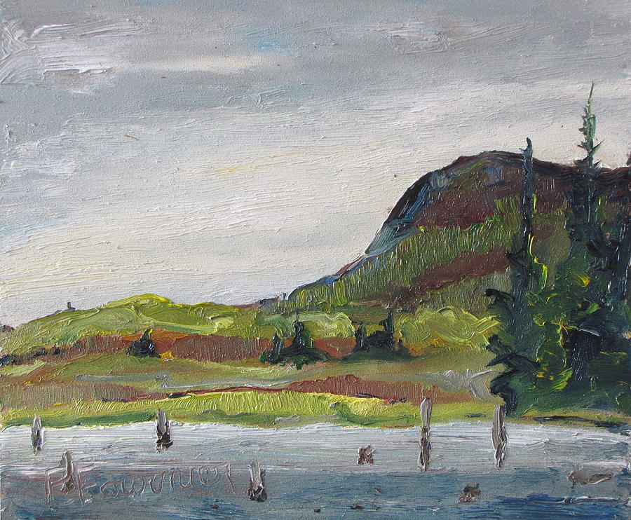Landscape Painting - At The Head Of Cherry Pond No One by Francois Fournier