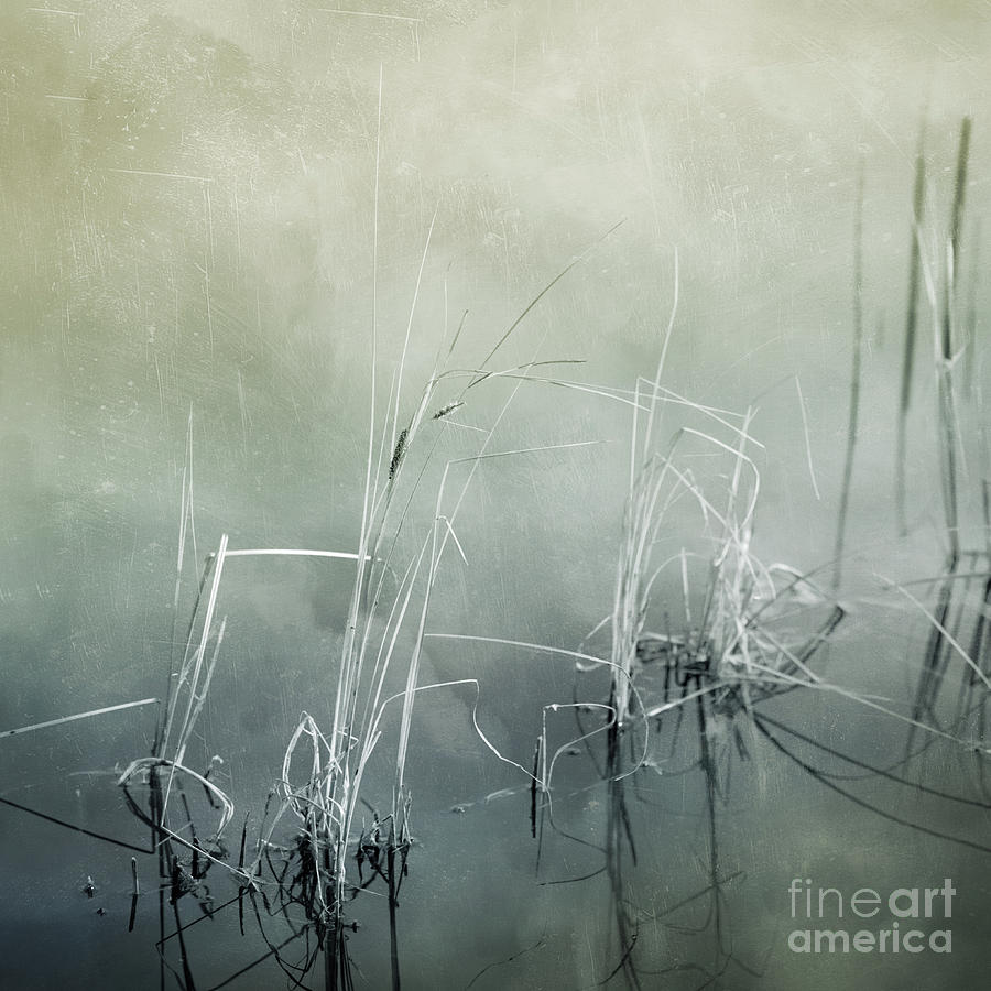 Series Photograph - At The Lake 3 by Priska Wettstein