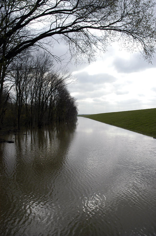 Flood Photograph - At The Levee by DArcy  Evans