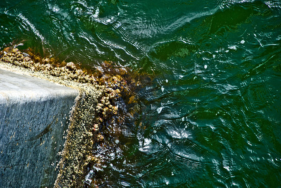 Ocean Photograph - At The Pier by Jennifer Kelly