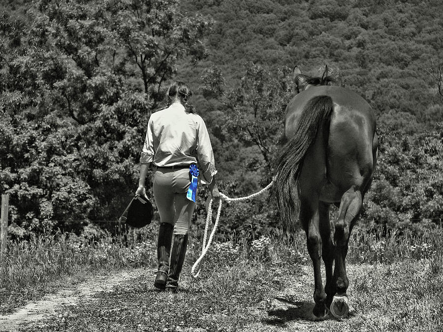 Horse Photograph - At The Show Blue Ribbon by JAMART Photography