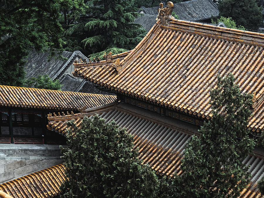 Roofscape, Beijing 2011 by Chris Honeyman