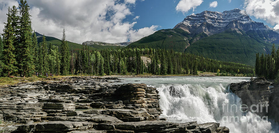 Athabasca Falls by Patricia Gould