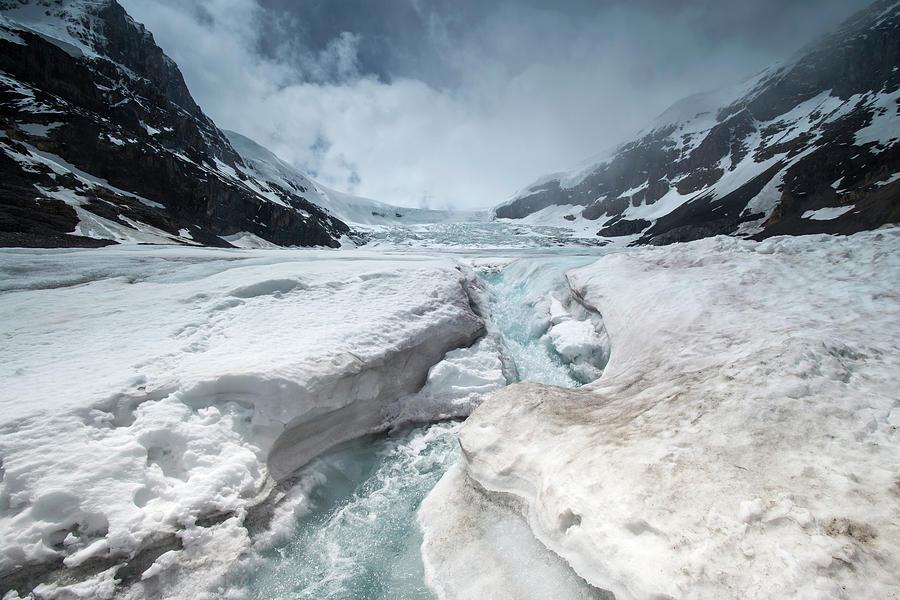 Athabasca Photograph - Athabasca Glacier, Alberta, Canada by David Stanley
