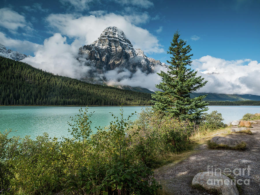 Athabasca River 4 by Patricia Gould