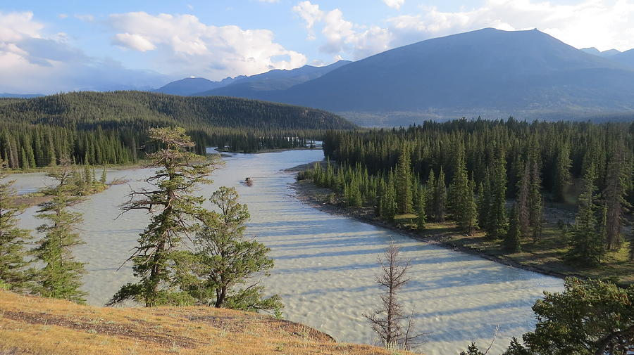 Athabasca River - Jasper by Hagen Pflueger
