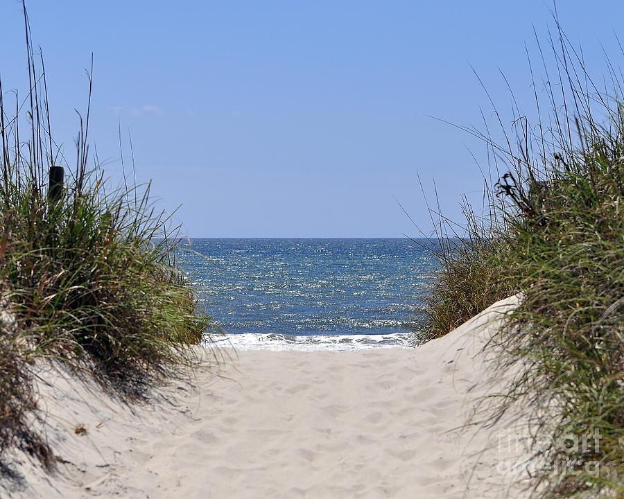 Beach Photograph - Atlantic Access by Al Powell Photography USA
