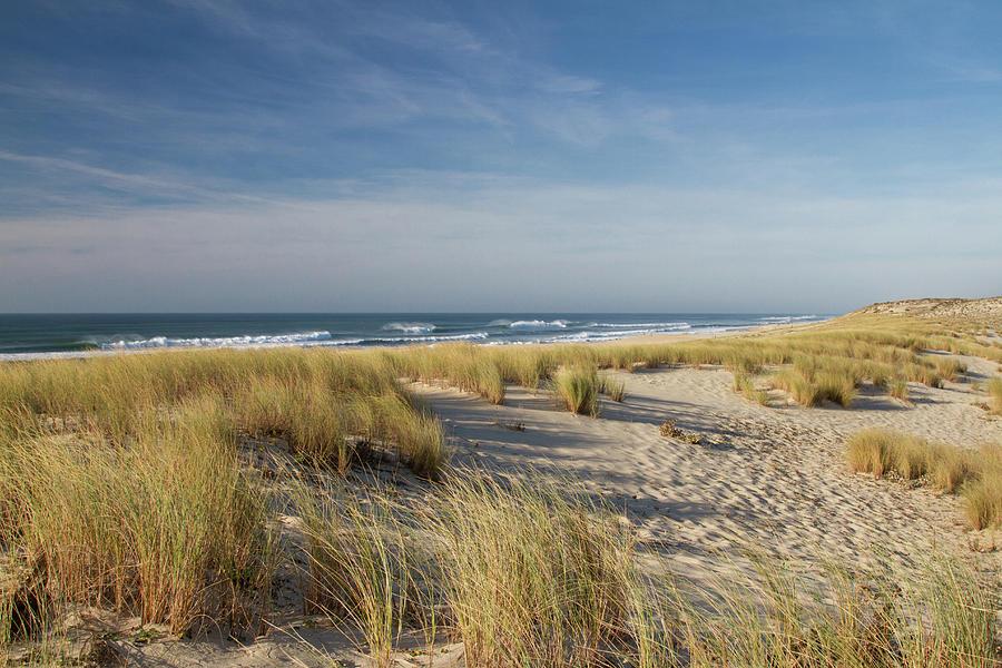 Horizontal Photograph - Atlantic Coast And Cap Ferret by I hope youll like it