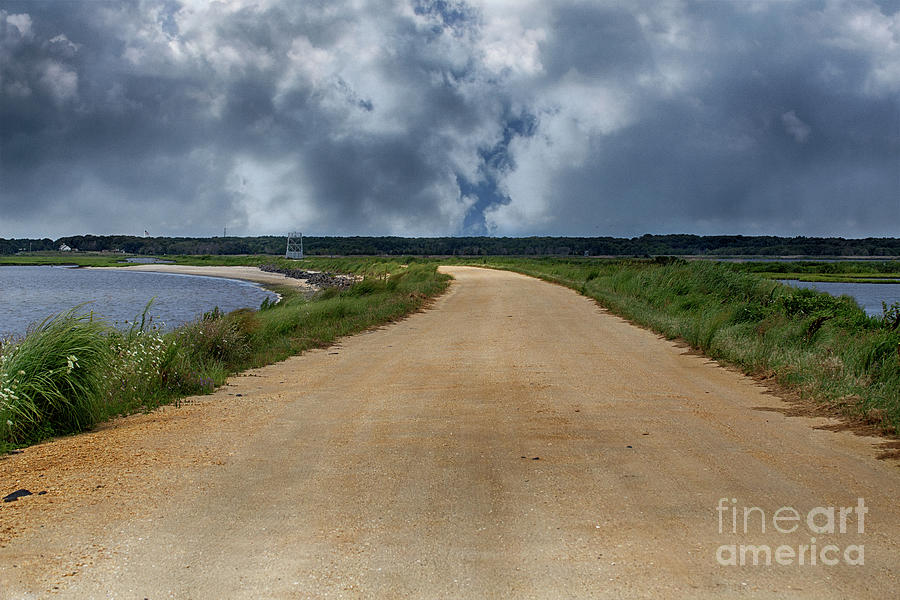New Jersey Photograph - Atlantic Flyways Of New Jersey by Tom Gari Gallery-Three-Photography