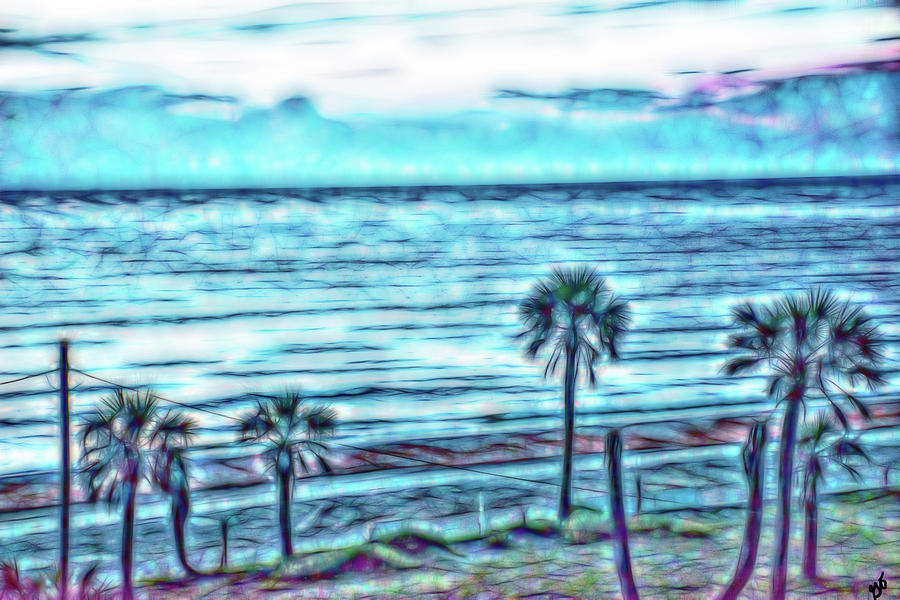 Atlantic Ocean and Palm Trees by Gina O'Brien