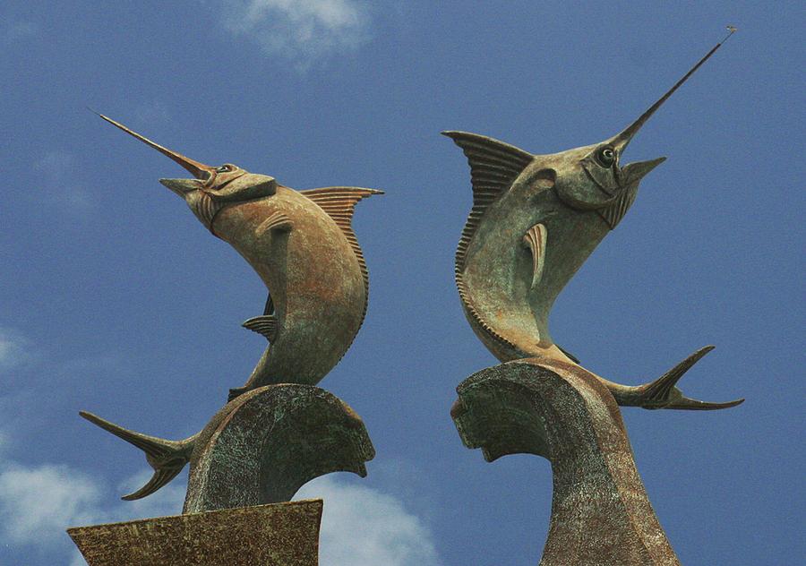 Atlantis Photograph - Atlantis Swordfish by Imagery-at- Work
