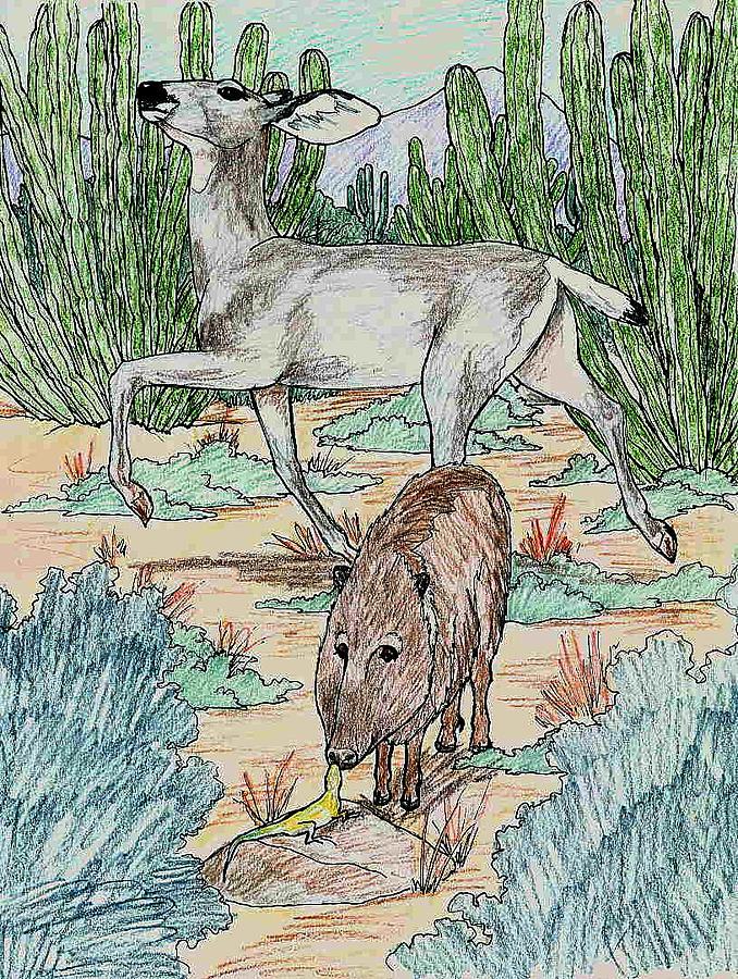 Mule Deer Drawing - Attitude by Theresa Higby