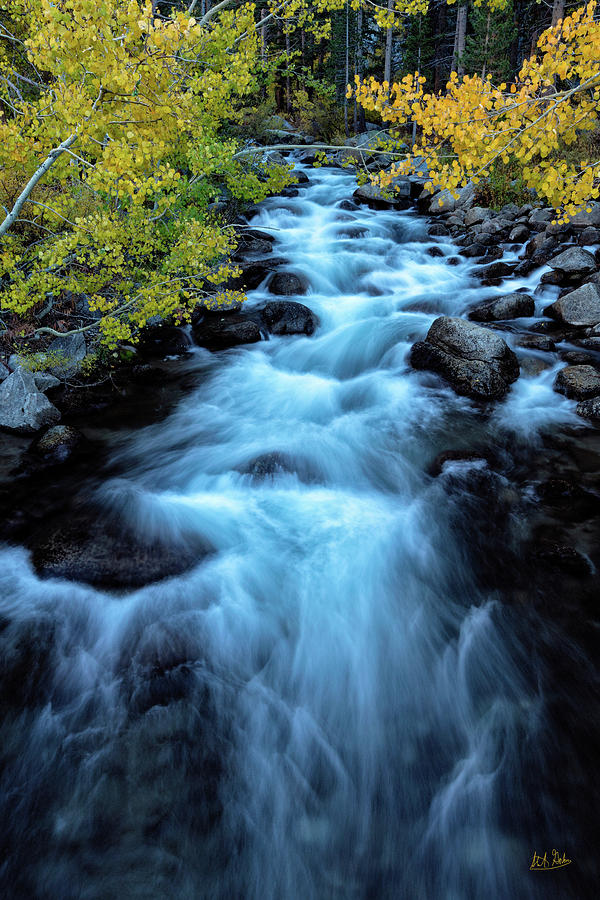 Auatumn On Bishop Creek II by Stuart Gordon