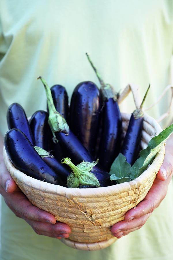 Aubergines In A Basket Photograph