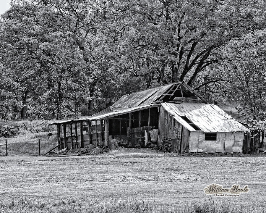 Auburn Barn by William Havle