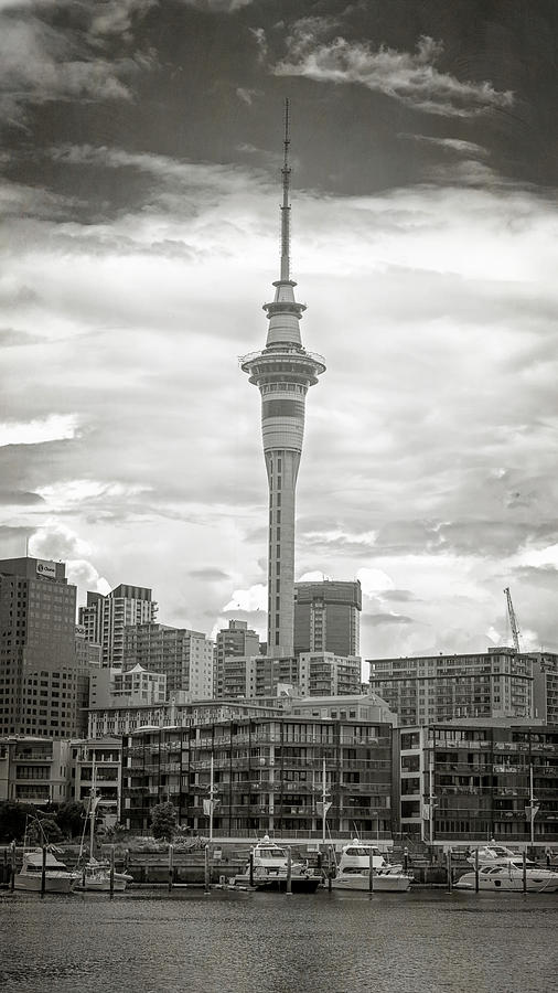 Joan Carroll Photograph - Auckland New Zealand Sky Tower Bw Texture by Joan Carroll