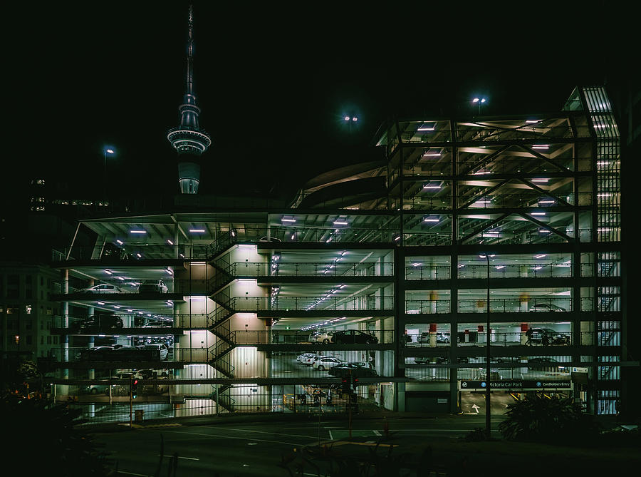 Auckland Nights by Nisah Cheatham