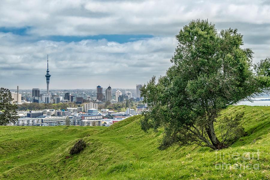 Auckland Skyline Photograph