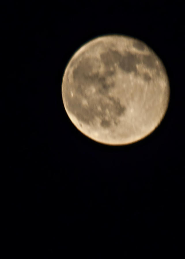 Moon Photograph - August Moon by Bill Perry