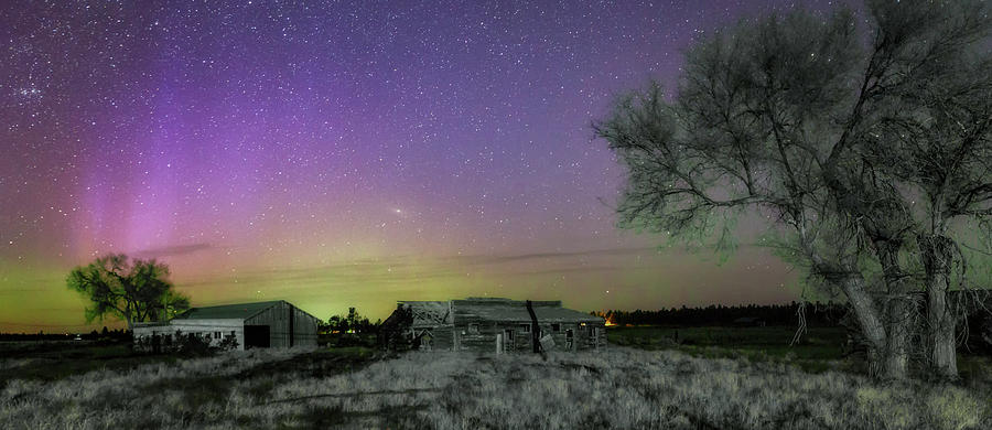Oregon Photograph - Aurora At The Old Ranch by Cat Connor