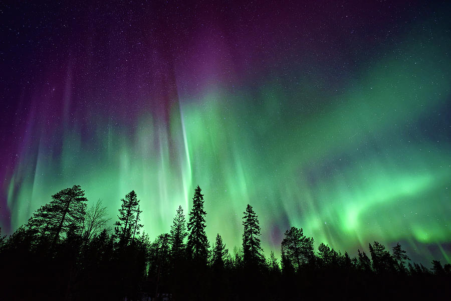 Northern Lights Photograph - Aurora Boreale In Lapponia by Chi ha paura del buio NextSolarStorm Project