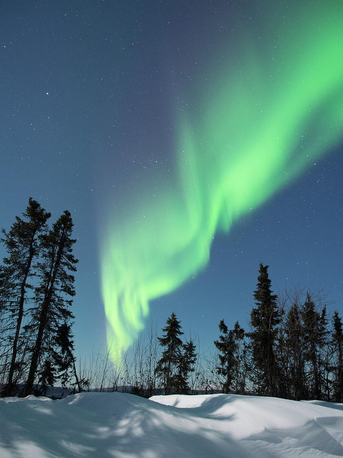 Aurora Borealis Magic by Brenda Smith DVM