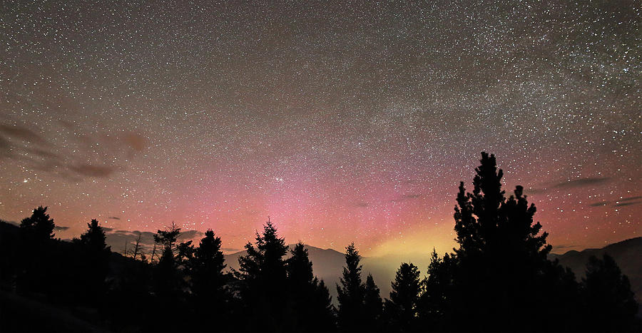 Aurora Photograph - Aurora Borealis Over Mammoth Hot Springs In Yellowstone Np by Jean Clark