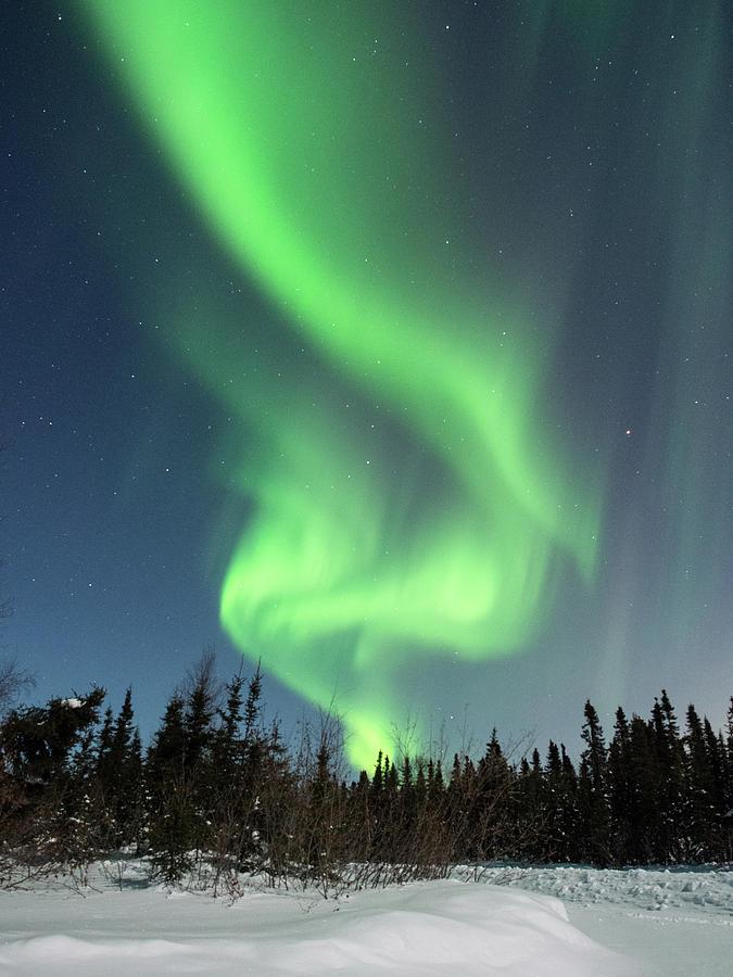 Aurora Borealis Swirls by Brenda Smith DVM