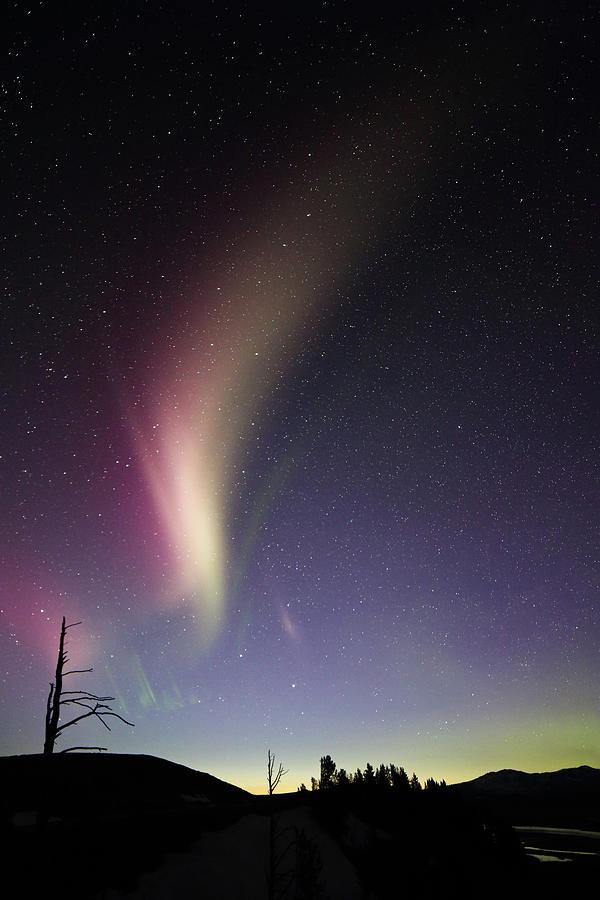 Aurora Photograph - Auroral Phenomonen Known As Steve 2 by Jean Clark