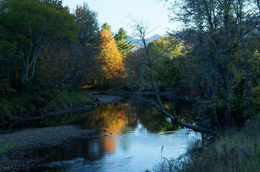 Ausable River Autumn by Bob Grabowski