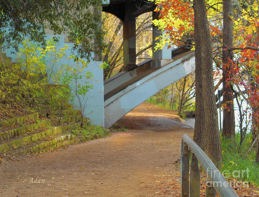 Lady Bird Lake Photograph - Austin Hike And Bike Trail - Under Lamar Street Bridge - Fall Colors by Felipe Adan Lerma