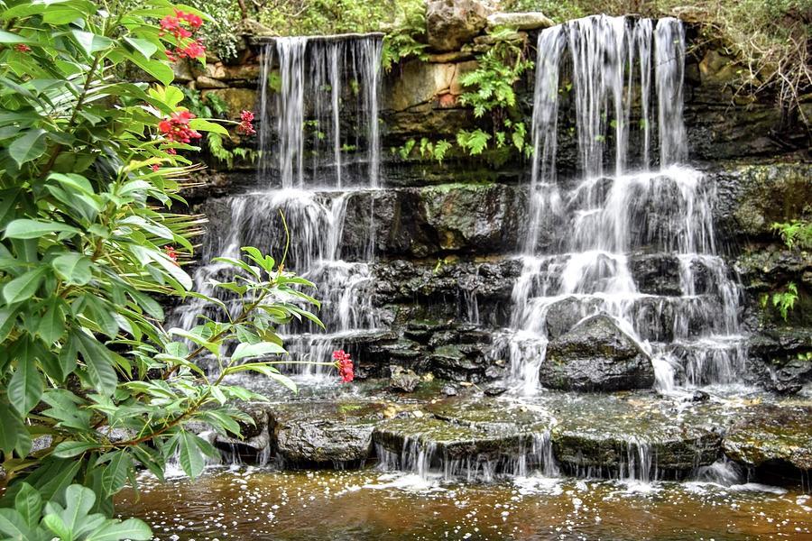 Austin Waterfall Photograph By Susan Allen