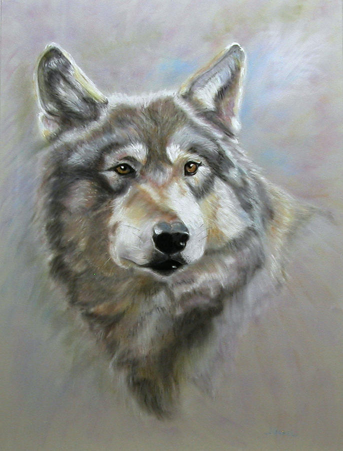 Pastel Pastel - Austins wolf by Laura Gabel