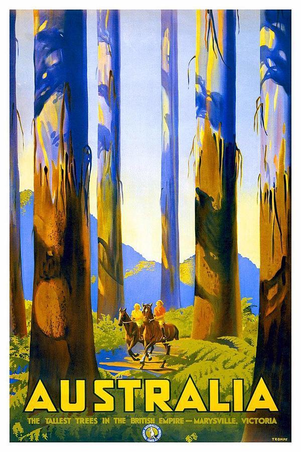 Australia - The Tallest Trees In The British Empire - Marysville, Victoria - Retro Travel Poster Photograph