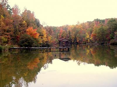 Autum Pond Photograph by Chris Jones