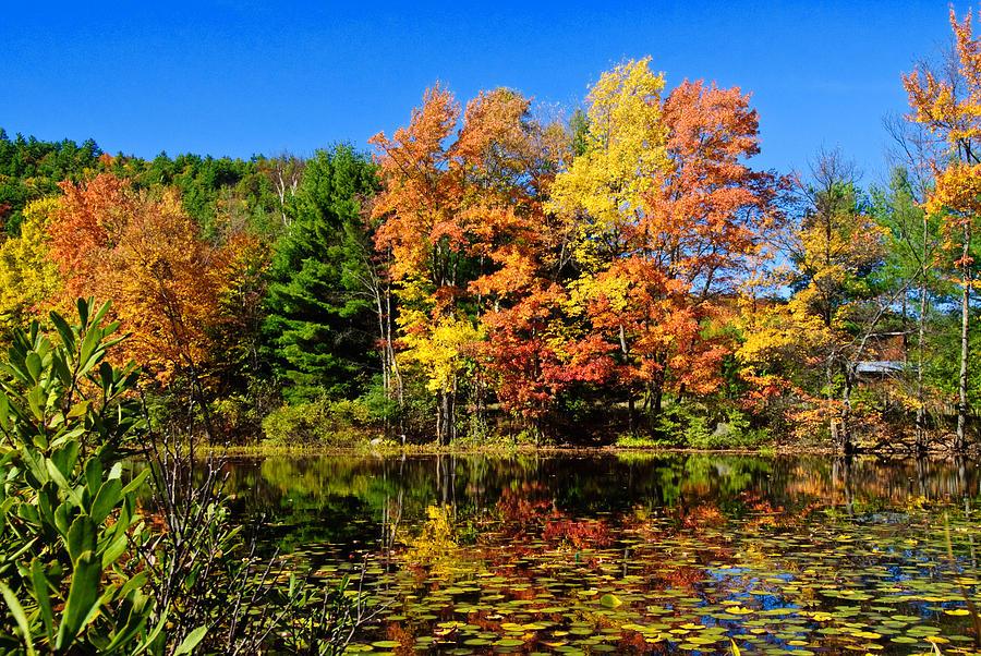 Adirondacks Photograph - Autumn - Fall Color by Louis Dallara