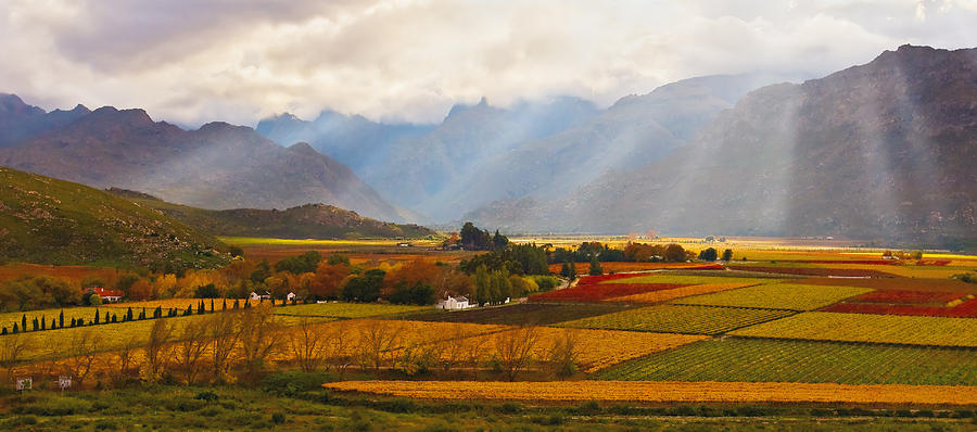 Landscape Photograph - Autumn - Hex-river Valley by Basie Van Zyl