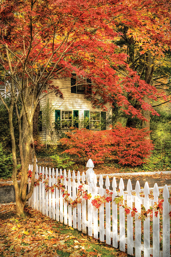 Savad Photograph - Autumn - House - Festive  by Mike Savad