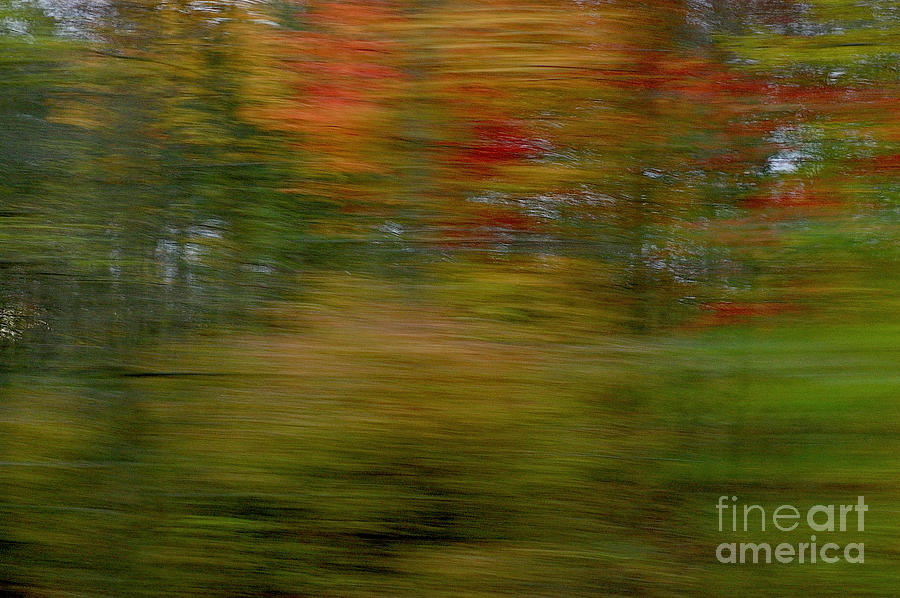 Autumn Abstract #2 by Randy Pollard