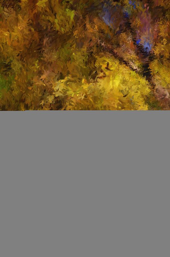 Light Digital Art - Autumn Abstract by David Lane