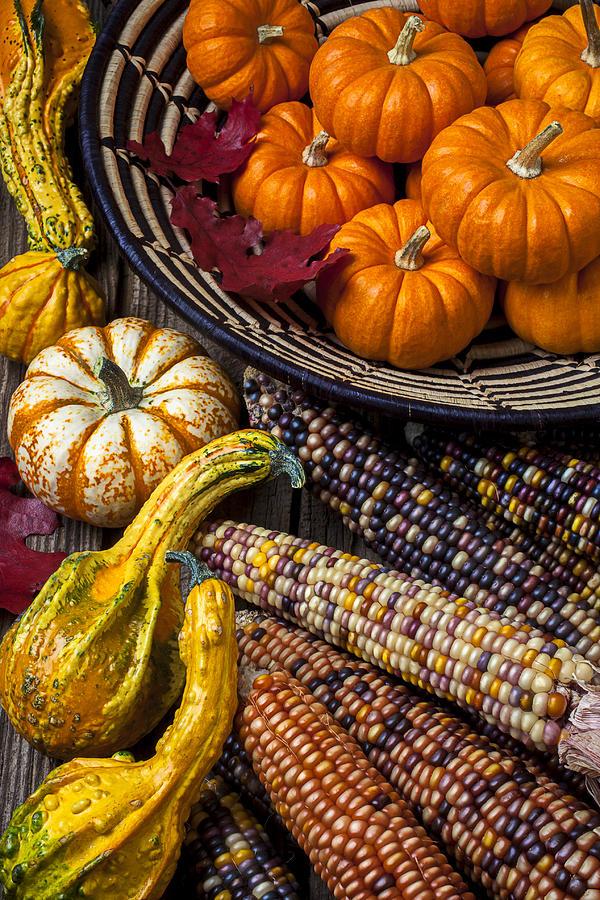Gourd Photograph - Autumn Abundance by Garry Gay