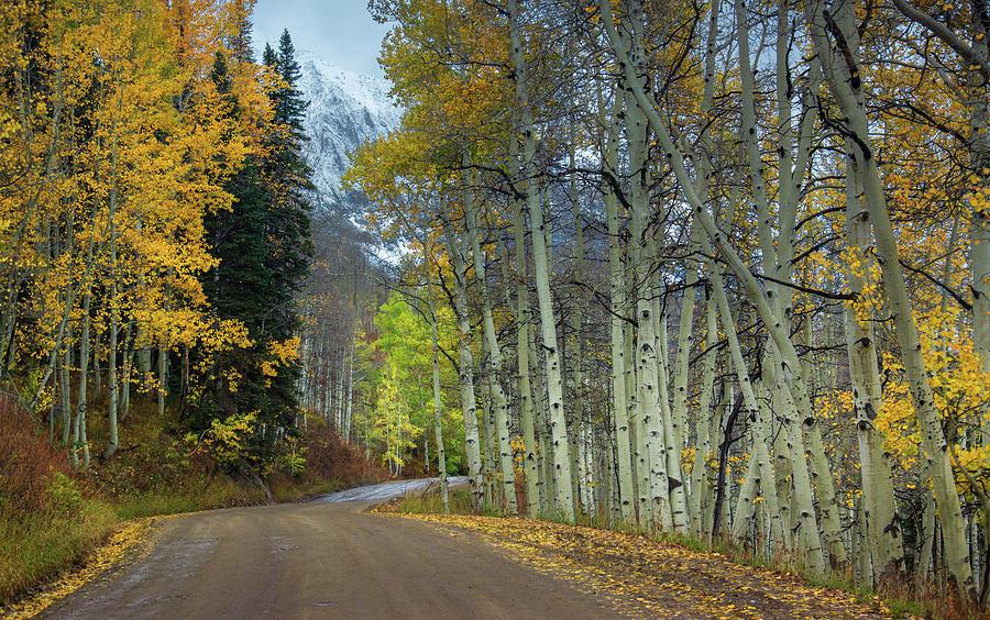 America Photograph - Autumn Along Gothic Road by John De Bord