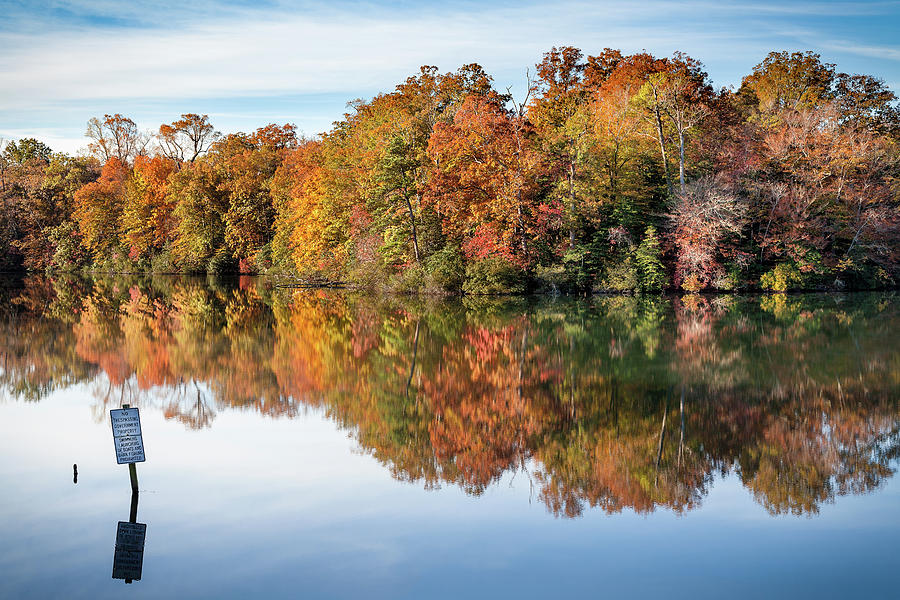 Williamsburg Photograph - Autumn Along the Parkway by Lisa McStamp
