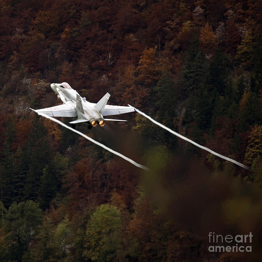 Alps Photograph - Autumn by Angel  Tarantella