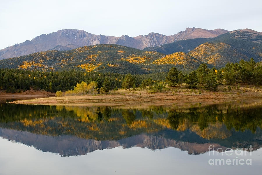 Autumn Aspen At Crystal Creek Reservoir Pikes Peak Photograph