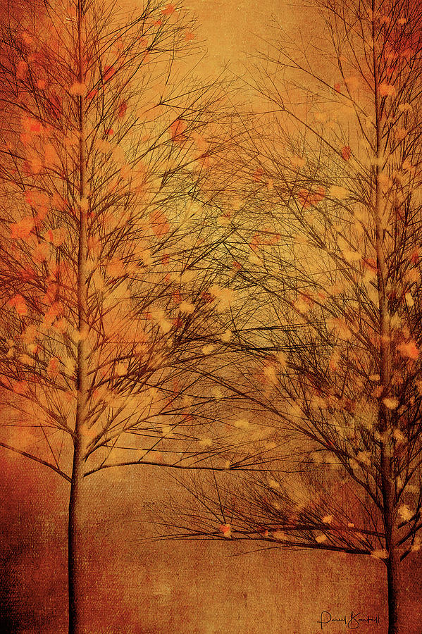 Autumn Aspen by Paul Bartell