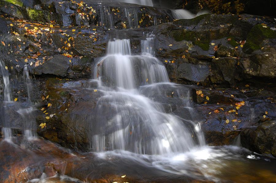 Laurel Falls Photograph - Autumn At Laurel Falls by Darrell Young