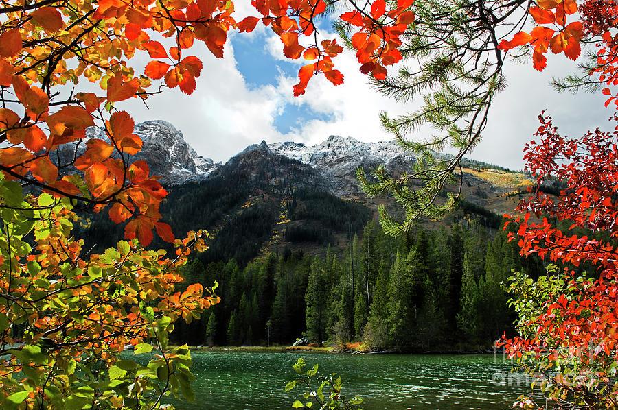 String Lake Photograph - Autumn At String Lake by Wildlife Fine Art