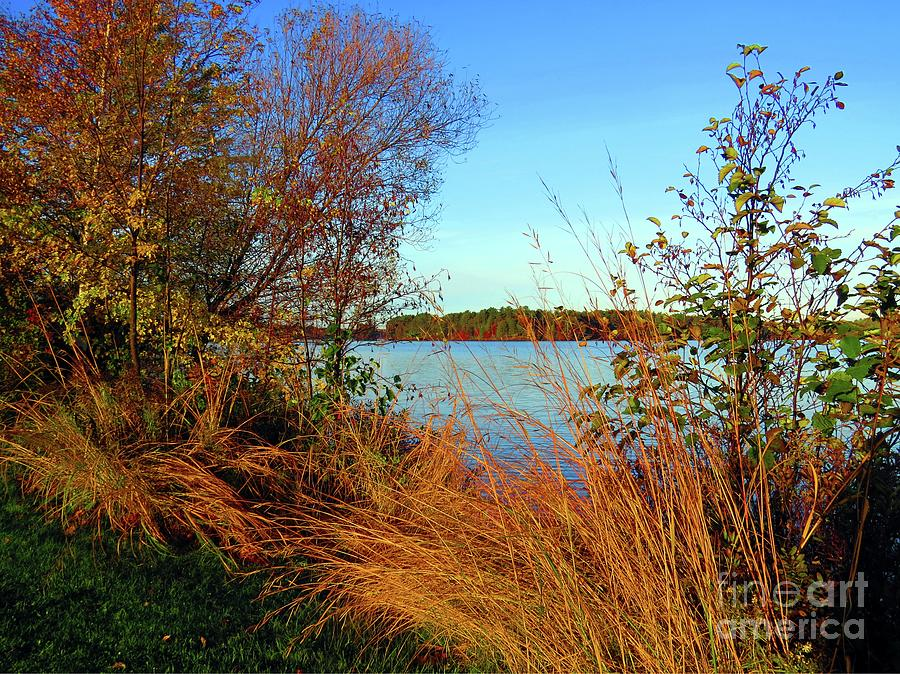 Autumn At The Lake by Desiree Paquette