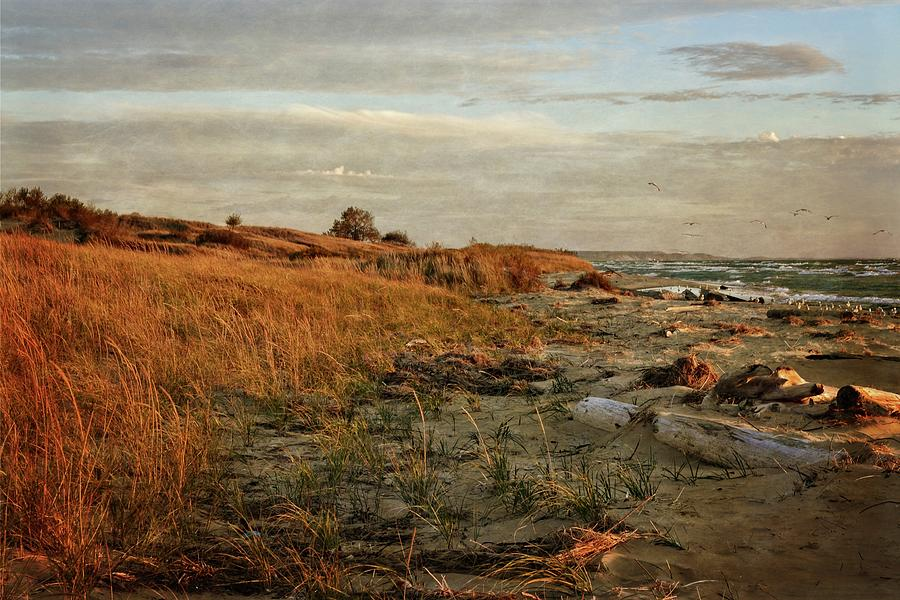 Autumn at the Mouth of the Big Sable by Michelle Calkins